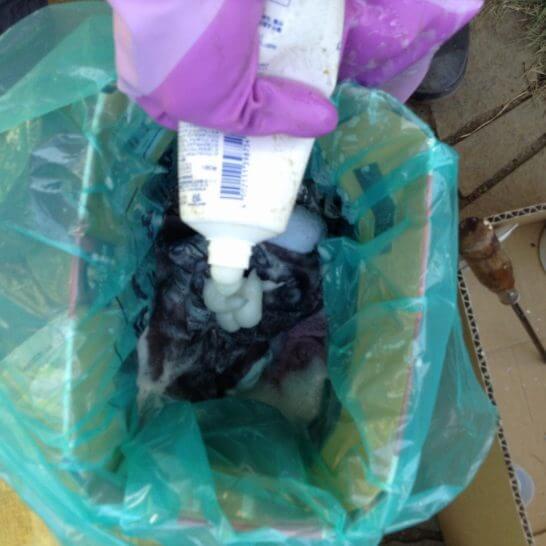 disposal_detergent4